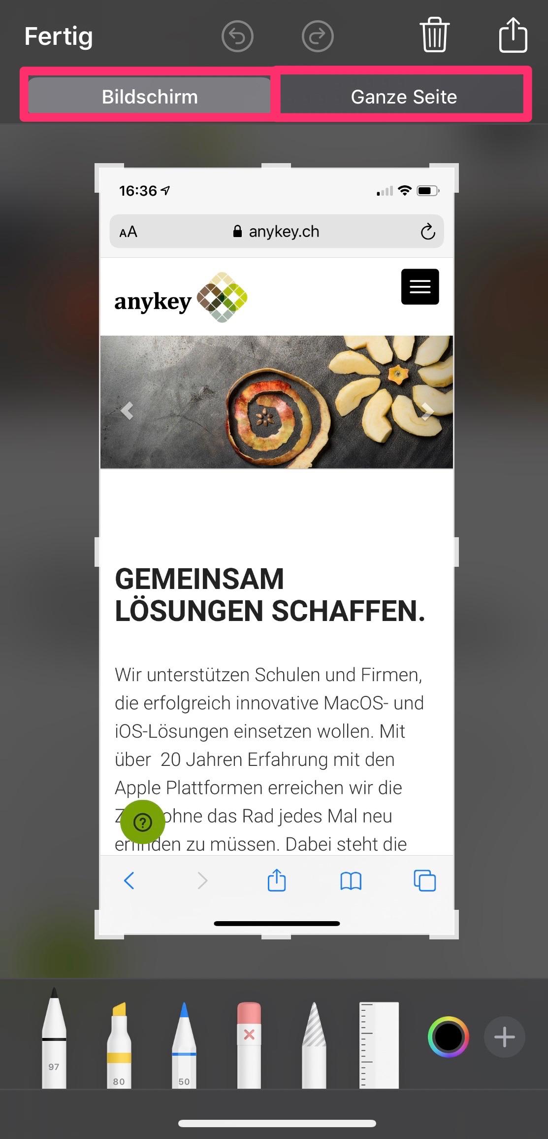 Ganze Website Screenshot